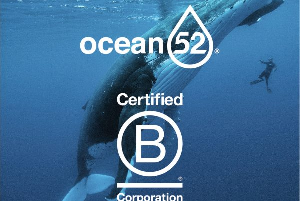 bcorp label